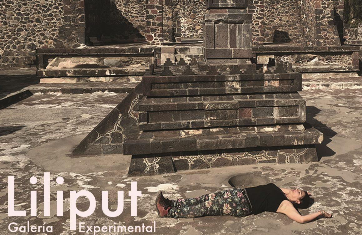 La artista Elizabeth Ross abrirá el ciclo de exposiciones de la Galería Experimental Liliput