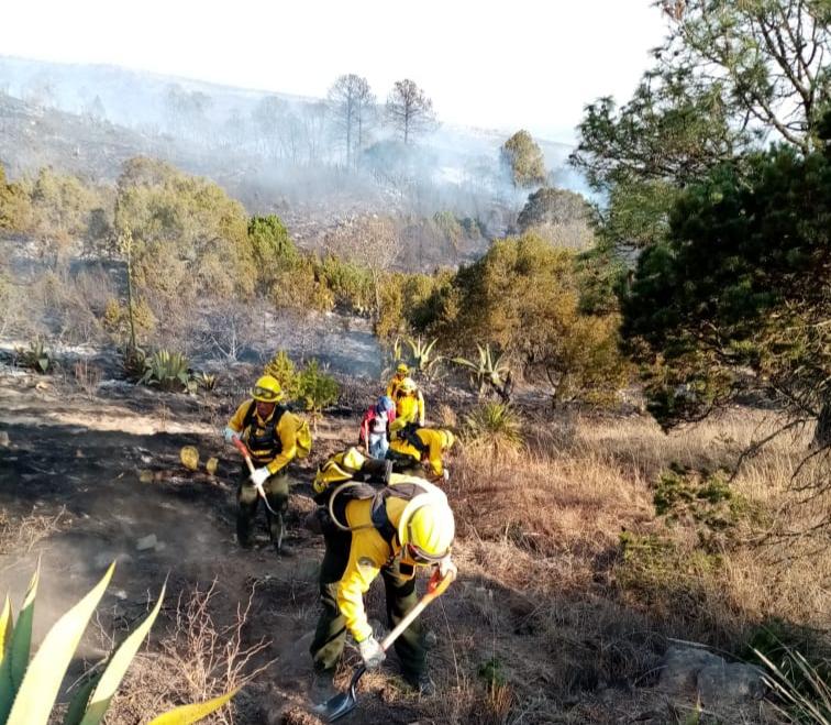 Sin vehículos y en medio de la pandemia, brigadistas enfrentan temporada crítica de incendios